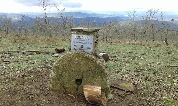 PicoBonalesHuelva.jpg